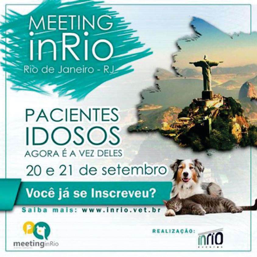 Meeting do Idoso