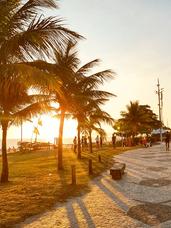 praia do pepe.png
