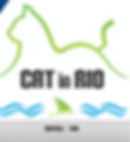 Cat_in_Rio_Natal_2017.png