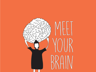 Meet Your Brain and Love It.