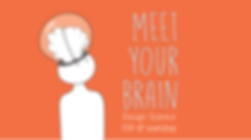 Meet Your Brain, systems thinking, Design, science, Brain