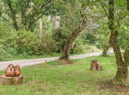 Ode aan de Natuur in Nationaal Bomenmuseum Velperengh 13 in Doorn,  van 5 september t/m 25 oktober.