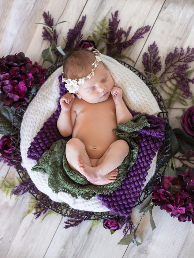Floral Newborn   Lauren Elizabeth Photography