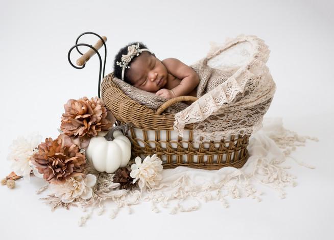 Cinderella newborn shoot