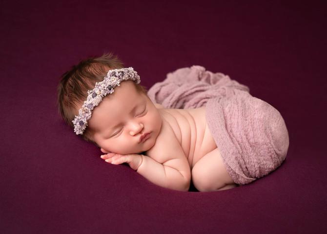Purple newborn photos