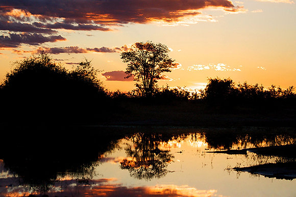 Sun Down by Sally Edwards