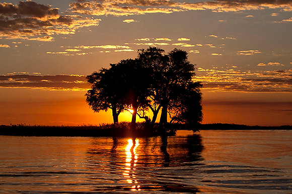 Silhouette Setting by Sally Edwards