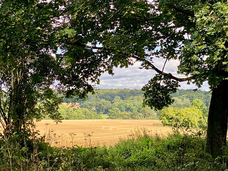 Hrvested fields beyond surrounding Turner & Thom