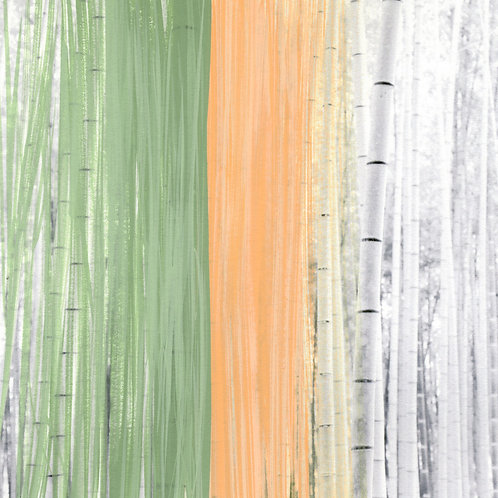 'Bamboo Shoots' Limited Edition Print