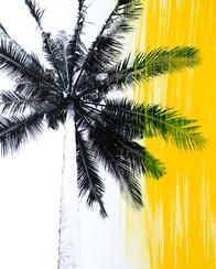Yellow Palms 3.jpg