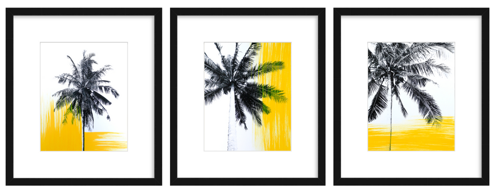 Three works from the 'Yellow Palms' Series 2018