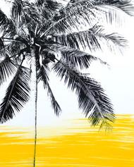 Yellow Palms 4