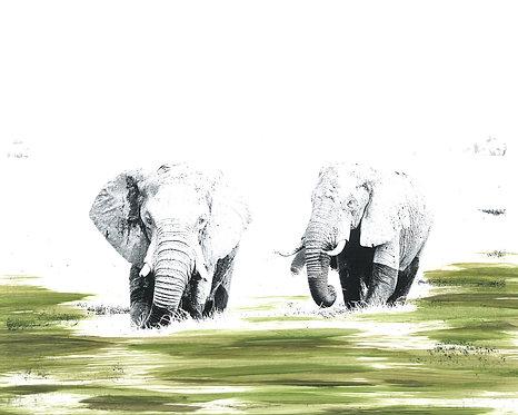 'Okavango Elephants' Limited Edition Print