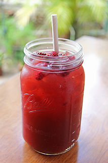 sprout tamarindo red berry tea