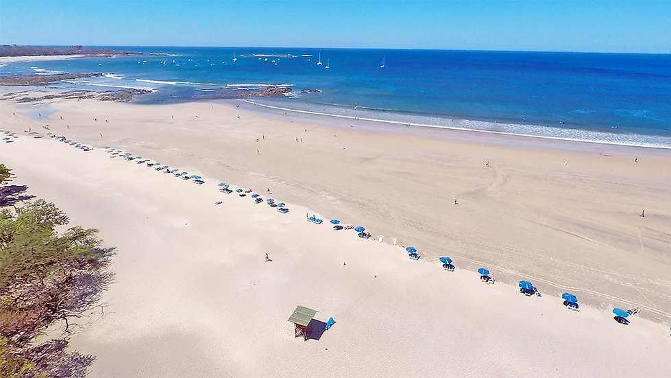 surf ranch tamarindo beach