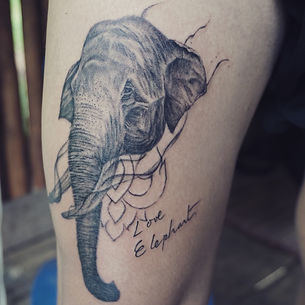 Elephant tattoo at Baan Khagee Tattoo Chiang Mai