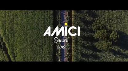 Amici 2019   Webclip oficial