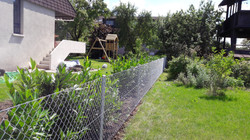 Diagonalgeflechtzaun in Weinfelden(T