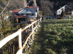 Akazienzaun in Flaesch