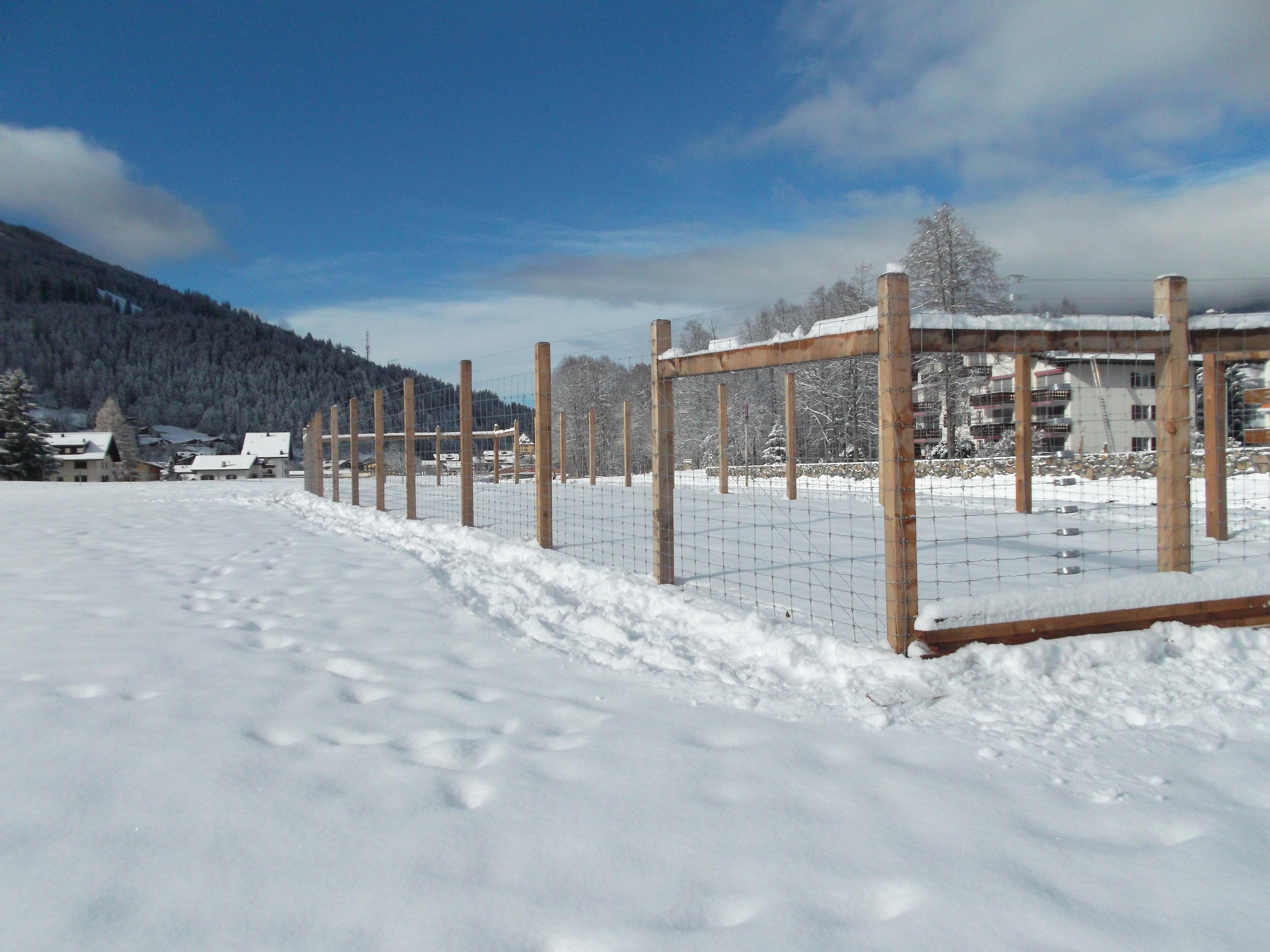 Wildschutzzaun in Davos