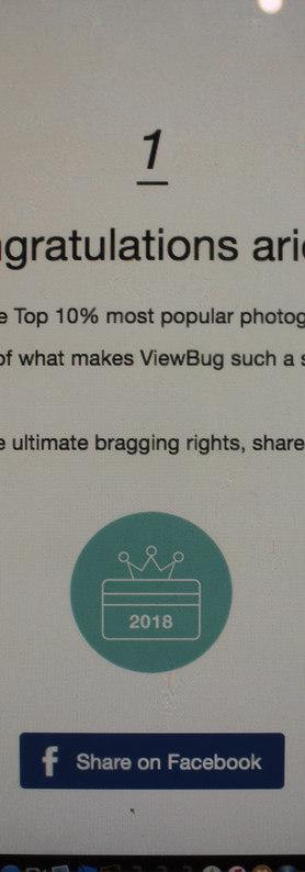 Virtual photography contest
