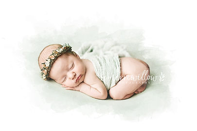best newborn photographer charleston sc