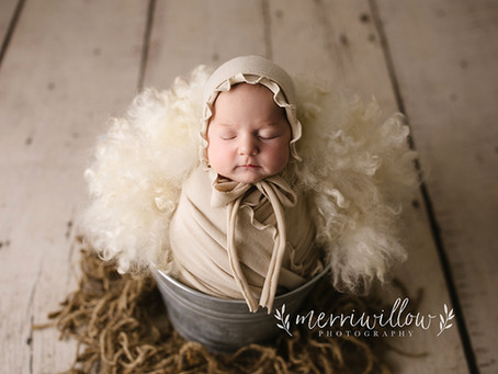 Why do I specialize in Newborn Photography?