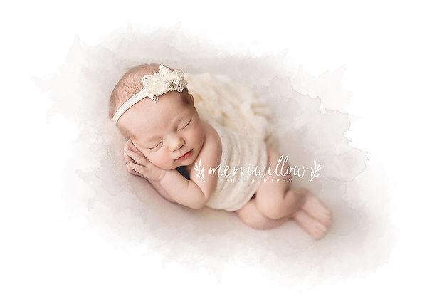 best charleston studio newborn photography