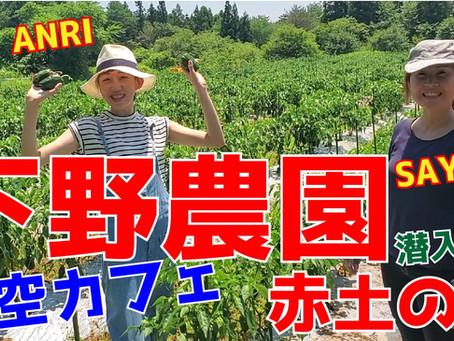【潜入調査】下野農園さんの赤土を見に「能登島」までレッツゴー!商店街に新しくオープンした「青空カフェ」♪こだわりの珈琲♪をYOUTUBEにアップしました!