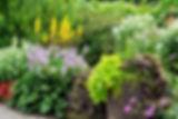 AdobeStock_82329109_edited.jpg