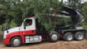 All Seasons Tree Moving