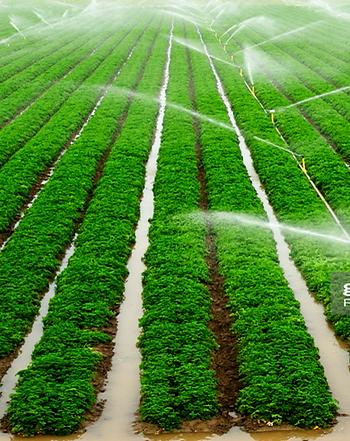 Crop-sprinklers.png