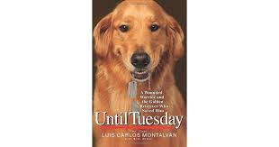 until tuesday book.jpg