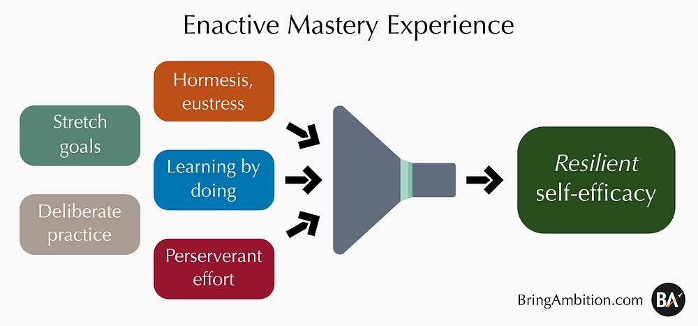 Enactive mastery experience, resilient self-efficacy, hormesis, eustress