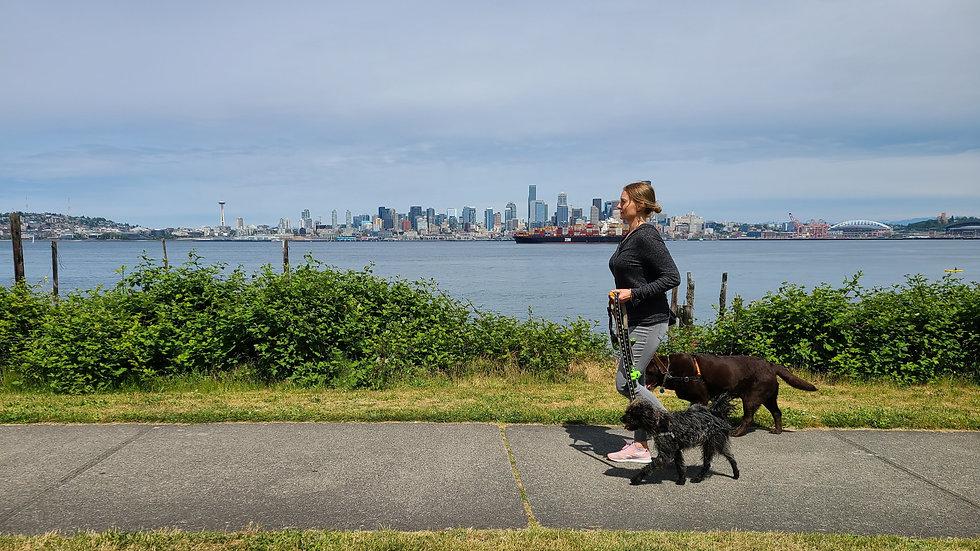 dog walking seattle 3_edited.jpg