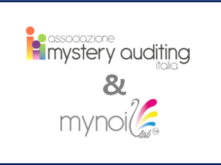 The Italian Mystery Auditing Association is sponsoring the review meeting of ISO 19011