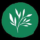 NS New Logo - Circle Only.png