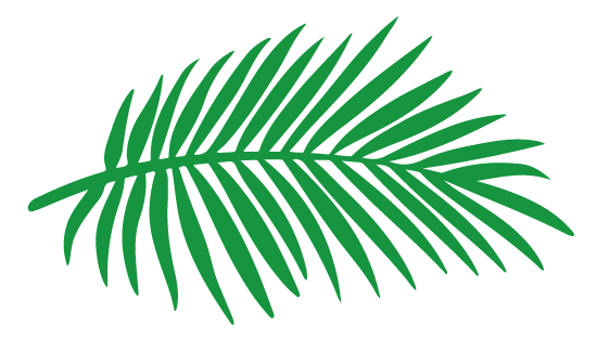 NS_Leaf__logo_2020 (1).png