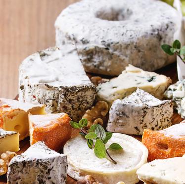 Sound Bites Series: Cheese Night