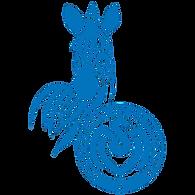 msv1000-msv_duisburg_logo_druck-web-einz