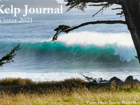Kelp Journal Winter Issue 2021 Out