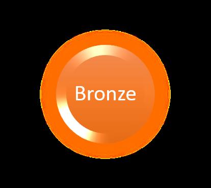 $100 Bronze Foundation Sponsor