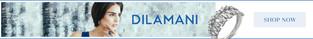 Dilamani_WebBanner-03.jpg