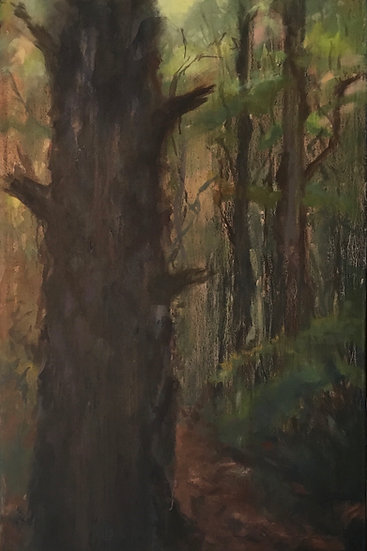 Spring Pine - 24 x 36