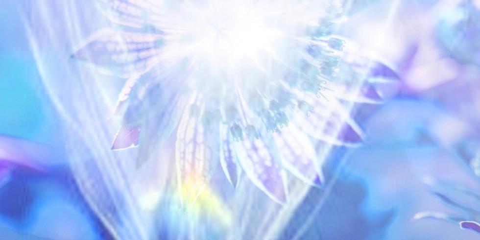 Online- Engelsmeditationen: Eintauchen in die Lichtschwingungen der Engel (12)