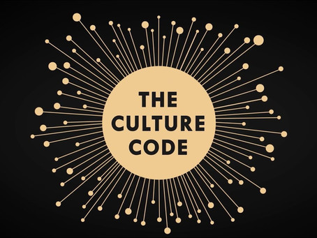 """Reflections on """"The Culture Code"""""""