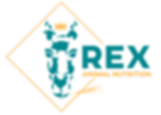 Rex-Brand-Logo.png