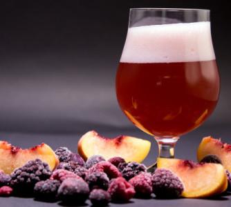 Dúvidas - Como adicionar frutas na cerveja?