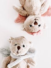 cute-downy-fur-1974656.jpg