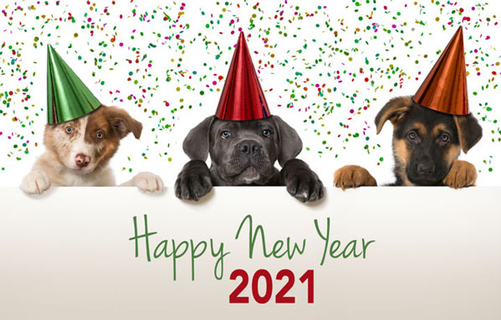 Small-Happy-New-Year-shutterstock_168400